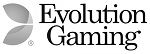 Evolution Gamin Software