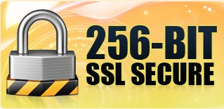 256 bit ssl security